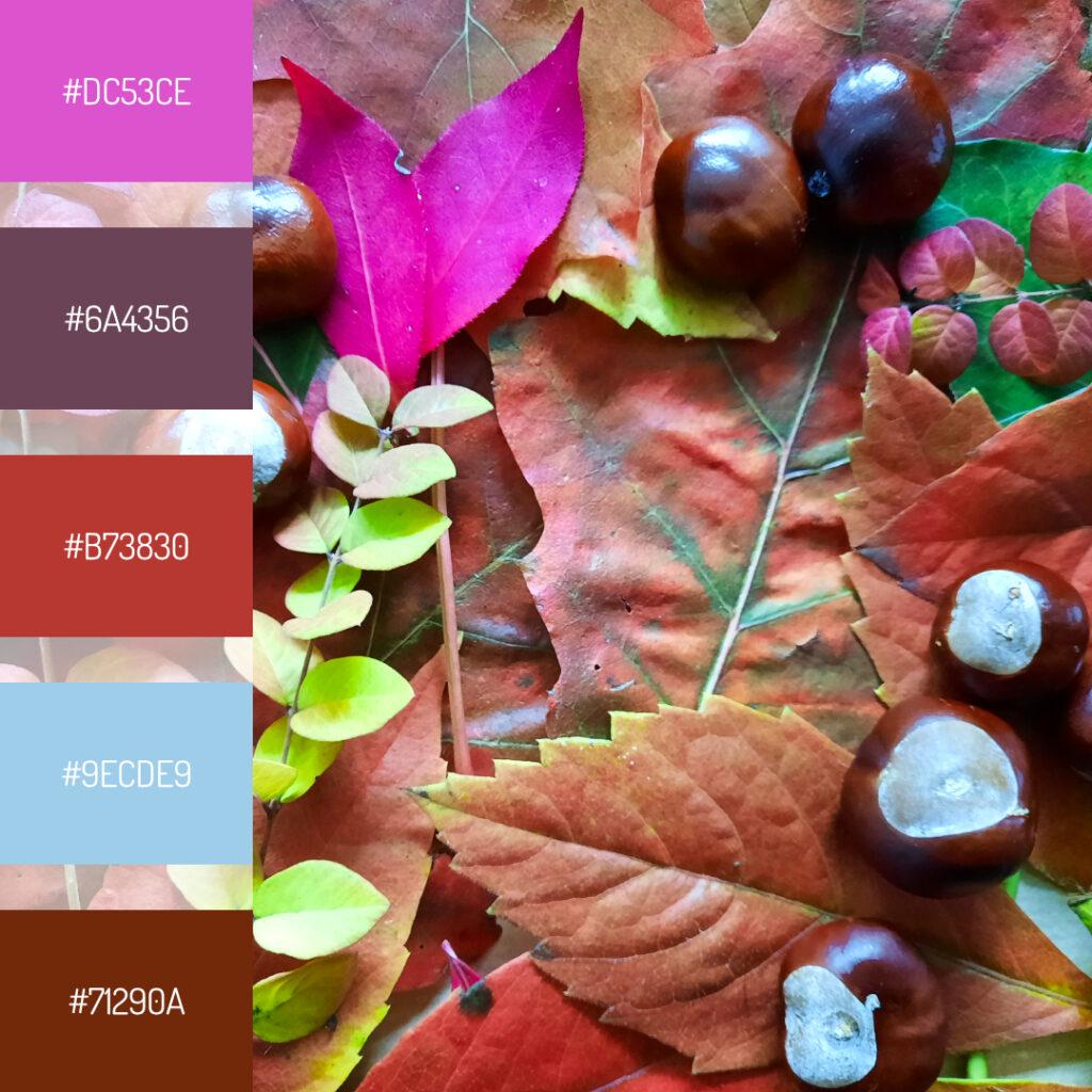 Herbstfarben mit Pink